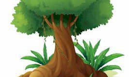Big Tree Income: My New Course Launches June 21